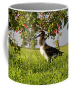 Albatross 1 Coffee Mug