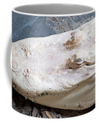 Albino Alligator Coffee Mug