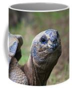 Aldabra Giant Tortoise's Portrait Coffee Mug