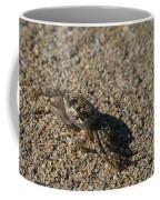 Ale Eke Ohiki Kuau Sand Crab Coffee Mug