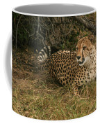 Alert Cheetah Coffee Mug