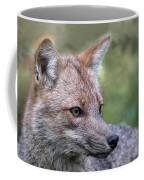 Alert Fox  Coffee Mug