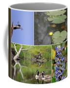 Alert Coffee Mug by Priscilla Richardson