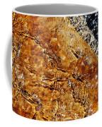 Alfred Caldwell Lily Pool Springs Coffee Mug