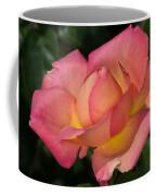 All It's Glory Coffee Mug