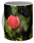 All Natural Peach Coffee Mug