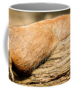 All Stretched Out Coffee Mug