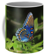 All The Colors Of The Sunset Sky Coffee Mug