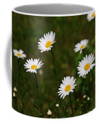 All The Daisies Coffee Mug