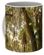 Allamanda And Oak Tree Coffee Mug