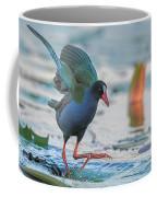 Allen's Gallinule  Coffee Mug
