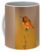 Allen's Hummingbird II Coffee Mug