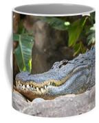 Alligator 1 Coffee Mug