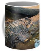 Crocodile Time  Coffee Mug