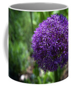 Allium Gladiator Closeup Coffee Mug