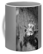 Almond Orchard 2 Coffee Mug