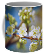 Almond Tree Branch Coffee Mug