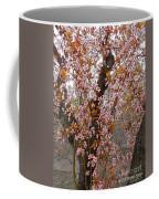 Almond Tree Flowers 05 Coffee Mug