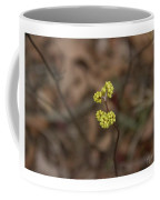 Almost Spring Coffee Mug