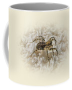 Along Came A Spider Coffee Mug