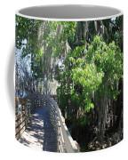 Along Florida Boardwalk Coffee Mug