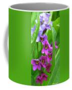 Alpine Parry Primrose Trampas Lake Nm Coffee Mug