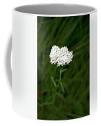 Alpine Yarrow Wildflower 1 Coffee Mug