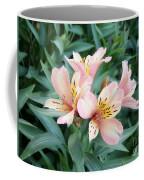 Astroemeria  Coffee Mug