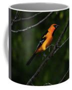 Altamira Oriole - Limb Hopping Coffee Mug