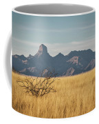 Altar Valley  Coffee Mug