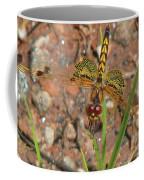 Amanda's Pennant Dragonfly Female Coffee Mug