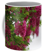 Amaranth Pink Flowering Locust Tree In Spring Rain Coffee Mug