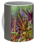 Amaranth- Two Coffee Mug