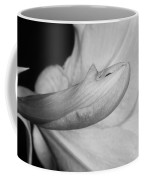 Amaryllis Flower About To Bloom In Black And White Coffee Mug