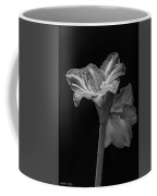 Amaryllis, Monochrome Coffee Mug