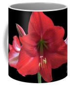 Amaryllis Petal Curls Coffee Mug