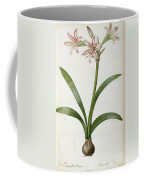 Amaryllis Vittata Coffee Mug by Pierre Redoute