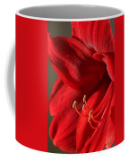 Amaryllis6689 Coffee Mug