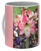 Amazing Amaryllis - Pink And White Apple Blossom Hippeastrum Hybrid Coffee Mug