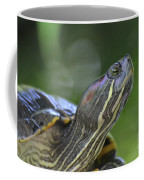Amazing Close-up Painted Turtle Resting Coffee Mug