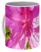 Amazing February 2017 Pink Azalea Coffee Mug