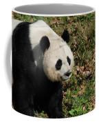 Amazing Giant Panda Bear Sitting In A Grass Field Coffee Mug