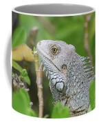 Amazing Gray Iguana Sitting In The Top Of A Bush Coffee Mug