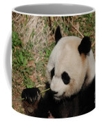 Amazing Panda Bear Holding On To Shoots Of Bamboo Coffee Mug