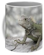 Amazing Posing Gray Iguana Perched On A Log Coffee Mug