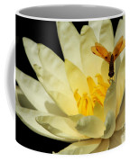Amber Dragonfly Dancer Too Coffee Mug