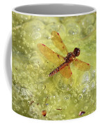 Amber Dragonfly On The Pond Coffee Mug