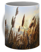 Amber Waves Of Pampas Grass Coffee Mug