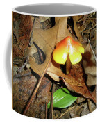Amberina Mushroom - Tiny Jewel In The Forest Coffee Mug