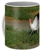 American Avocet Coffee Mug